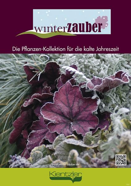 Poster Winterzauber