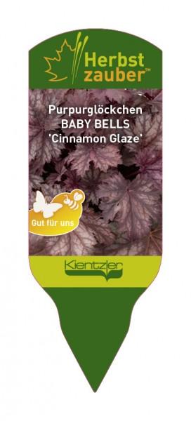 Heuchera BABY BELLS 'Cinnamon Glaze'