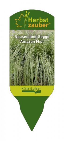 Carex comas 'Amazon Mist'