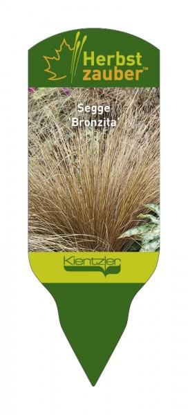 Carex flagellata 'Bronzita'