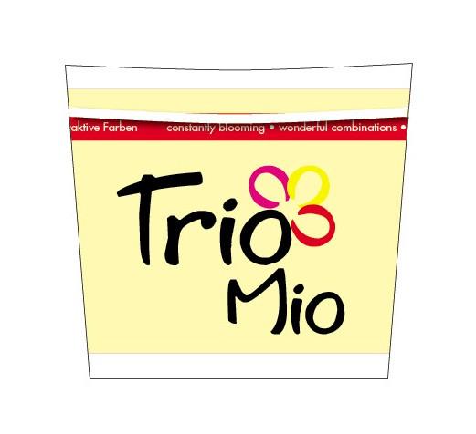 12er Dekotopf Trio Mio