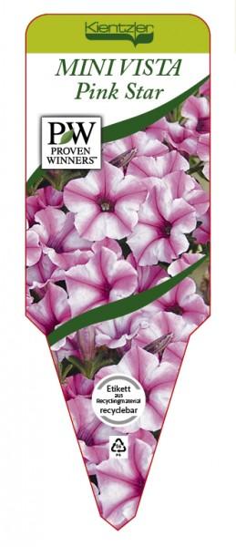 Petunia Hybrid MINI VISTA 'Pink Star'
