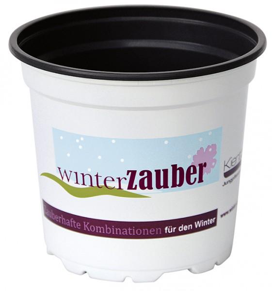 Töpfe 13er Winterzauber