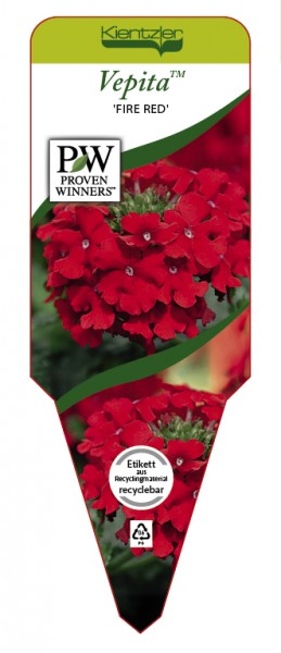VEPITA™ 'Fire Red'