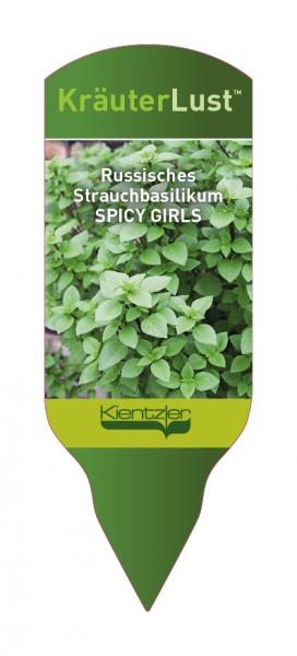 Ocimum x hybridum SPICY GIRLS Irina Russisches Strauchbasilikum