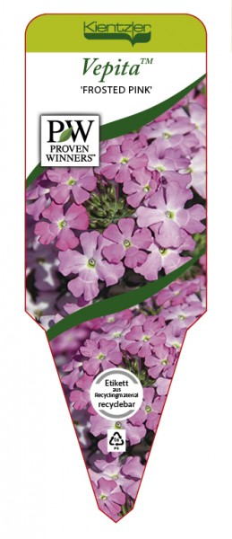 VEPITA™ 'Frosted Pink'
