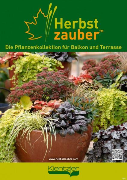 Poster Herbstzauber 'Töpfe'