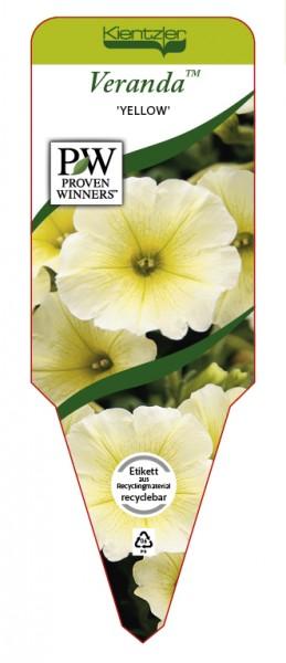 Petunia Veranda 'Yellow'