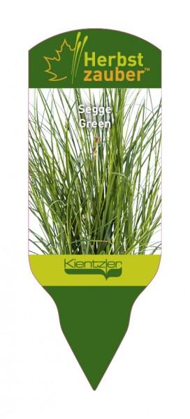 Carex brunnea 'Green'