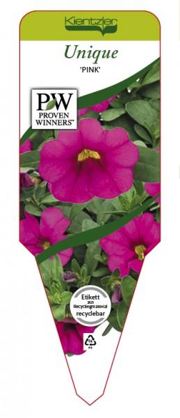 Calibrachoa Hybr. Superbells™ UNIQUE 'Pink'